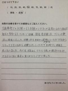 voice-2